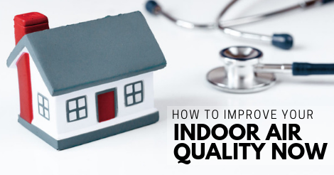 how to improve your indoor air quality right now