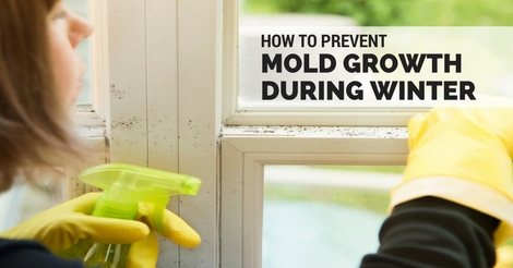 how to prevent mold growth during winter